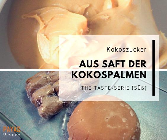 taste_suss_blog_4