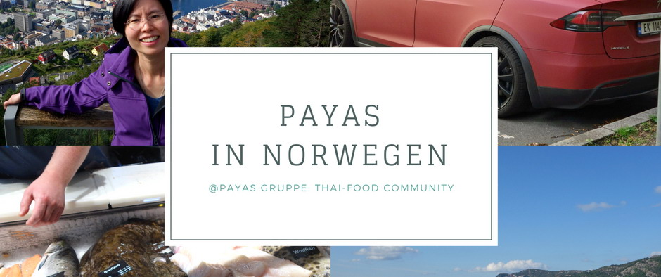 🇳🇴 PAYAS in Norwegen